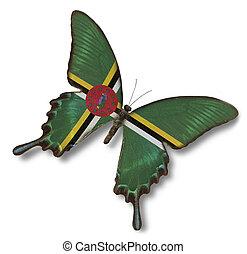 dominica läßt, auf, papillon