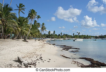 Dominican Republic beach scenery
