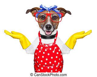 dona de casa, cão