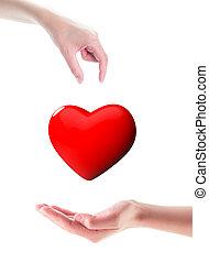 donación, órgano