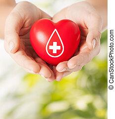 donante, tenencia, señal, corazón, hembra entrega, rojo