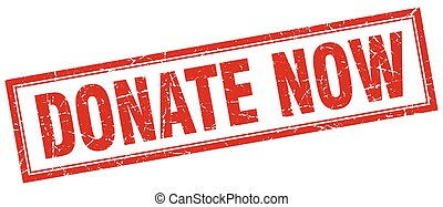 donate now red square grunge stamp on white