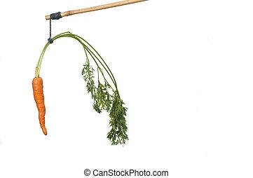 dondolare, uno, carota bastone, come, un, incentivo