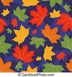 donker, bladeren, esdoorn, blue.