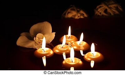 donker, kaarsjes, zwevend, -, orchidee