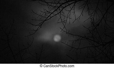 donker, maan, voor, een, verschrikking, verhaal