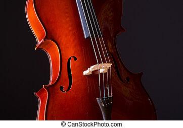 donker, muziek kamer, cello
