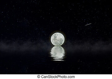 donker, volle, night., maan