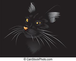 donker, zwarte kat