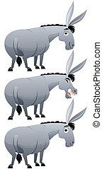 Donkey - Cartoon donkey over white background in 3 versions.
