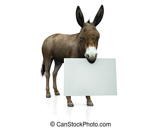Donkey holding sign