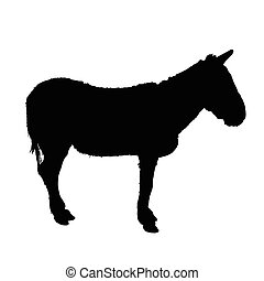 Donkey vector silhouette on white background.