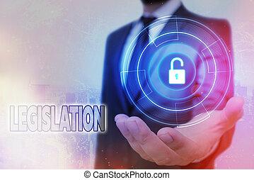données, legislation., toile, cadenas, application, system., graphiques, signification, texte, sécurité, écriture, fonction, confection, puissance, règles, information, exercice, concept