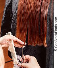 donna, capelli