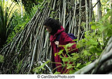 donna, ecotourism:, andando gita, foresta