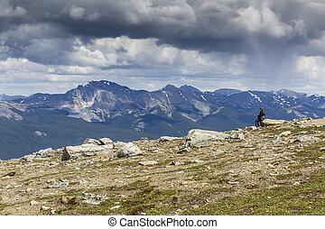 donna guardando, fuori, sopra, uno, valle montagna, -, alberta, canada