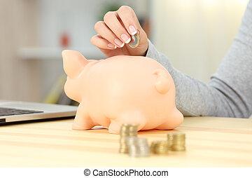 donna, mano, mettere, piggy, banca moneta