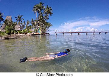 donna, snorkeling, in, uno, tropicale, ricorso, in, figi