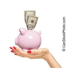 donna, soldi, sopra, isolato, mano, piggy, bianco, banca