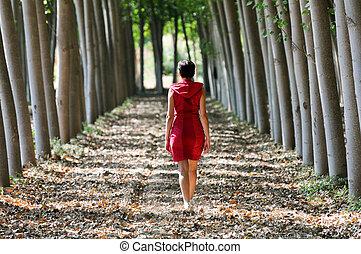 donne, vestito, in, rosso, camminare, in, il, foresta