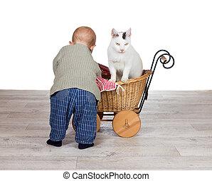 donner, bébé, cavalcade, landau, chat