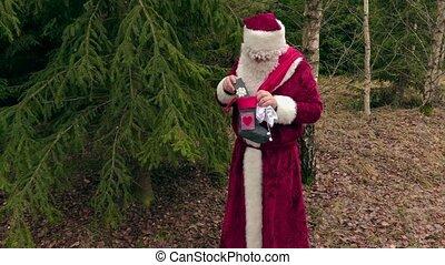 dons, impeccable, claus, forêt, santa