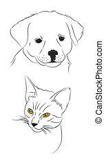 doodle, cão, e, gato