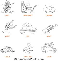 Doodle cereals groats, porridge, muesli, cornflakes, oat, rye, wheat, barley, millet, buckwheat, rice, corn vector set