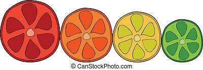 Doodle citrus slices