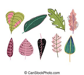 doodle contemporary, set of different leaves foliage nature