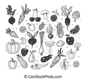 Doodle fruits and vegetables. Vector sketch illustration of healthy food.