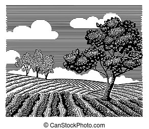 doodle, krajobraz, rodzajowy