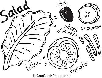 doodle, salada
