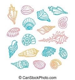 Doodle set of seashells.