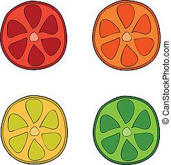 Doodle style citrus slices