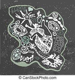 doodles, biológia, vektor