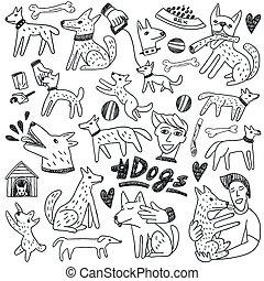 doodles, hunden