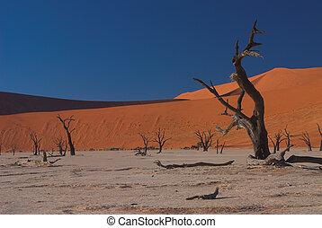 Dooie Vlei, Namibia #1