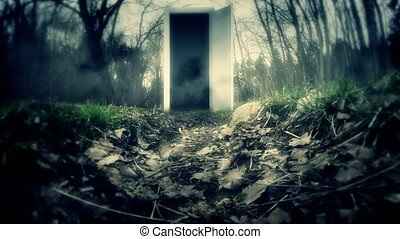 Door in a dark forest with the portal