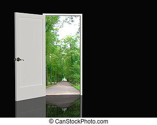 Door - The door open in the real world