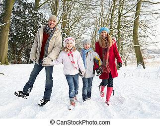 door, wandelende, bosterrein, gezin, besneeuwd