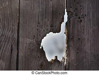 door/fence, buco, vecchio
