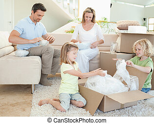 doosje, karton, gezin, uitpakken