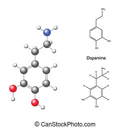 Dopamine - Structural chemical formulas and model of...