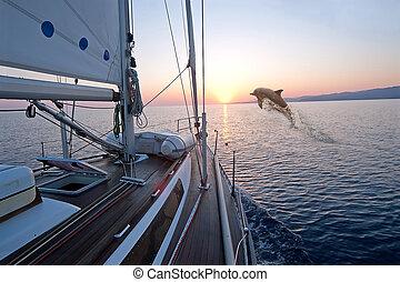Doplhin jumping near sailing boat at sunrise
