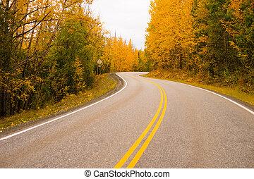 doppio, giallo, linee, cadere, autostrada, alaska, autostrada, trasporto