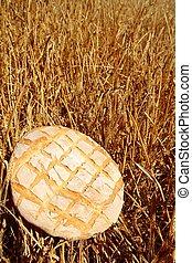 doré, blé, paille, brioche, rond, pain