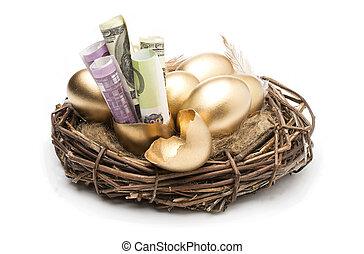 doré, dollars, oeufs, arrière-plan., blanc, nid