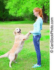 doré, formation, femme, elle, été, chien, propriétaire, herbe, heureux, retriever