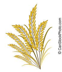 doré, jasmin, couleurs, fond, riz blanc